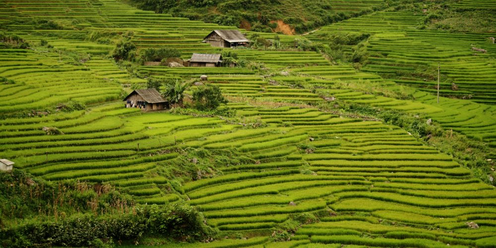 Vietnam : La Grande Traversée ! (avec un guide francophone)