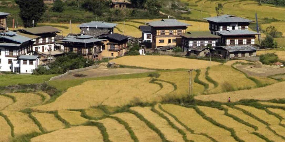 Circuit culturel dans l'Ouest du Bhoutan