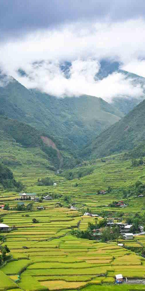 Trekking au pays Ifugao et Busuanga