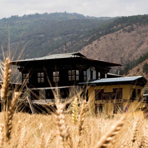 Circuit vélo au Bhoutan
