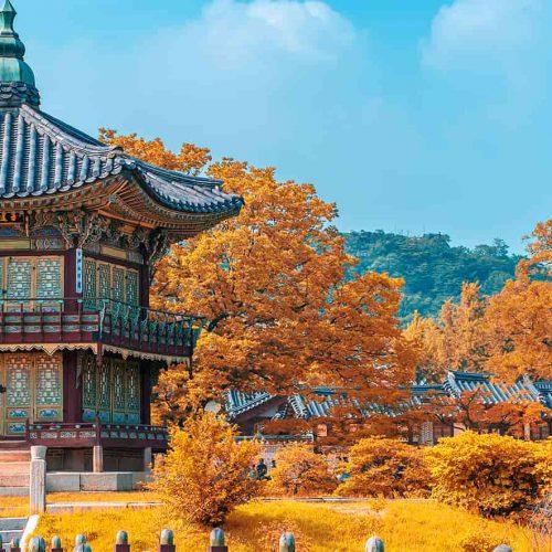 Voyage de Séoul à Jeju