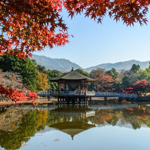 De Tokyo à Kyoto, sur la route du Tokaido
