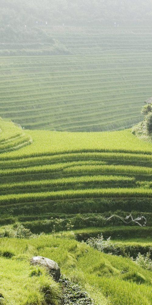 Circuit photo – Minorités ethniques et paysages du Nord Guangxi et Sud Guizhou